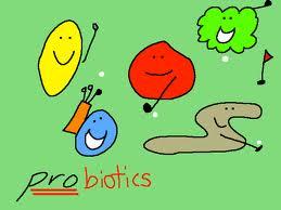 A Heatlhy Gut Needs Probiotics