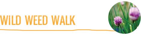 wild-weed-walk
