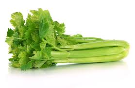 Celery is easy to grow at home...